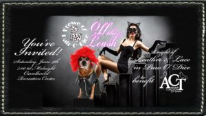 A Night of Leather & Lace in Paw O' Dice to benefit the Animal Coalition of Tampa!