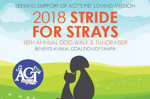 ACT 2018 Stride for Strays